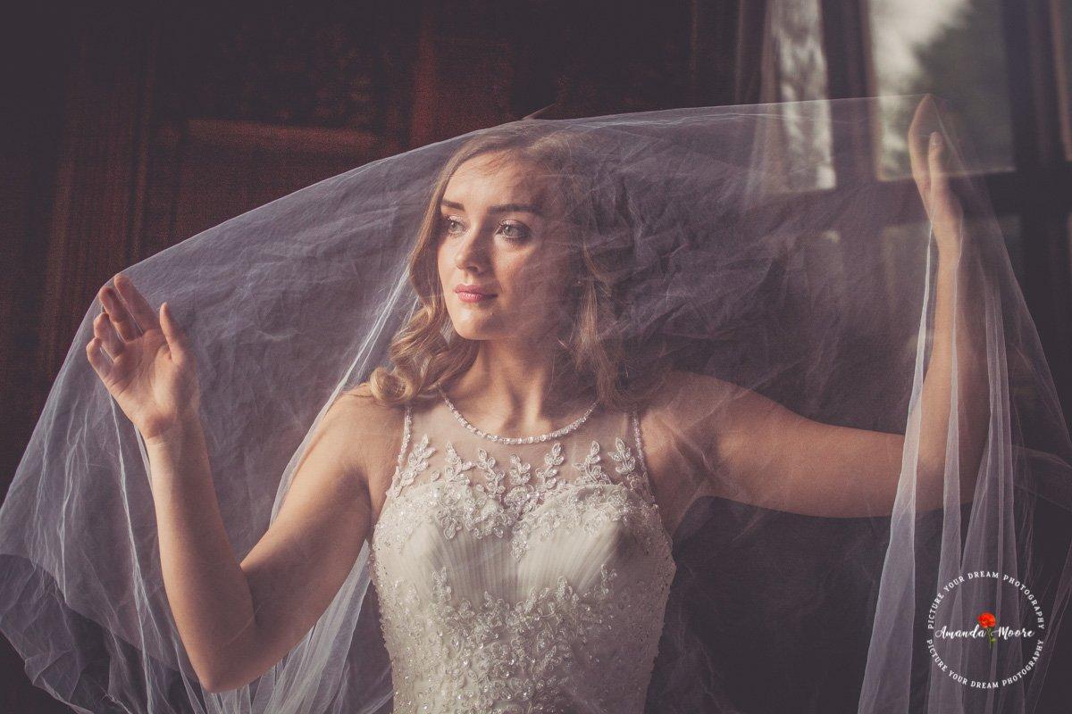 Bride veil wedding photograph