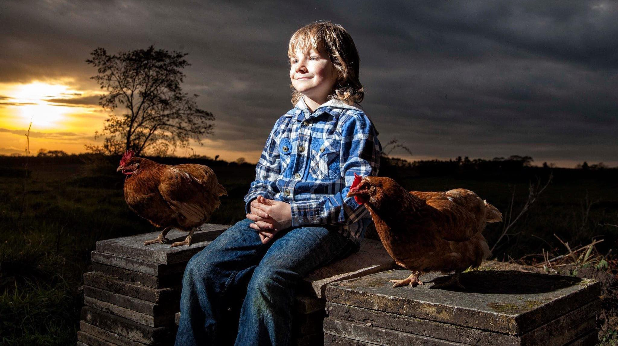 young farmer boy chickens styled shoot